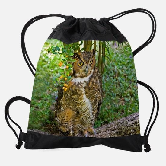 owlmousepad.jpg Drawstring Bag