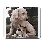 Beautiful Dogo with kitty Mousepad