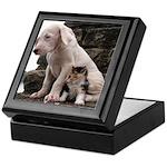 DOGO LOVERS Keepsake Box