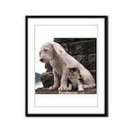 dogo pup Framed Panel Print