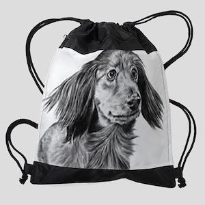 Longhaired Dachshund Drawstring Bag