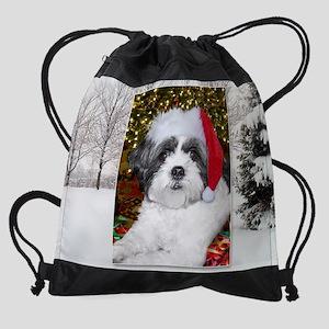 2-bellecalendarCHRISTMAS Drawstring Bag