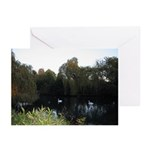 Swans A'Swimming Greeting Cards (Pk of 10)