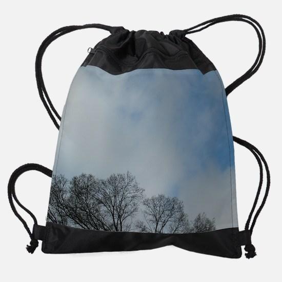 02012008 treeBlueSky horiz.png Drawstring Bag