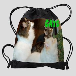 CATS WALL CALENDAR Drawstring Bag