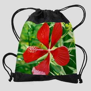 Star of Texas mouse pad Drawstring Bag