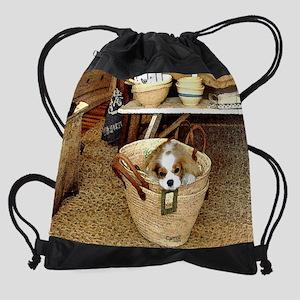 Cavalier King Charles Spaniel Drawstring Bag