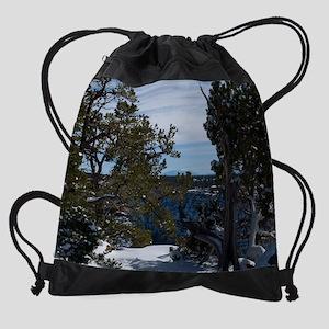 GCSnow2937_16x20 Drawstring Bag