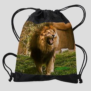 kLion20by16 Drawstring Bag