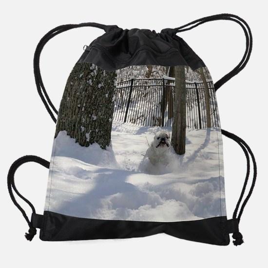 gb3.jpg Drawstring Bag