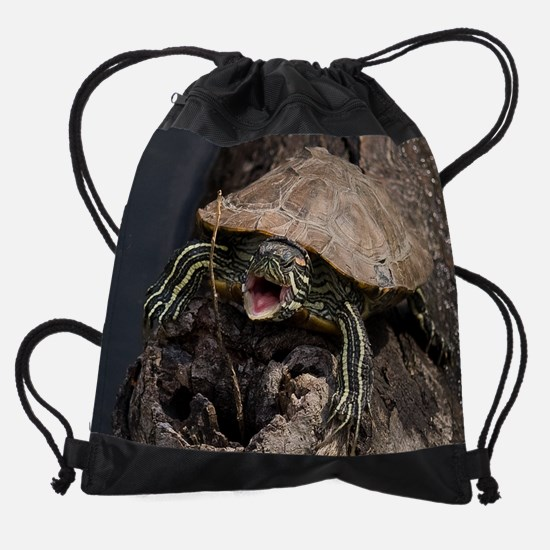 Mad Turtle 4.png Drawstring Bag