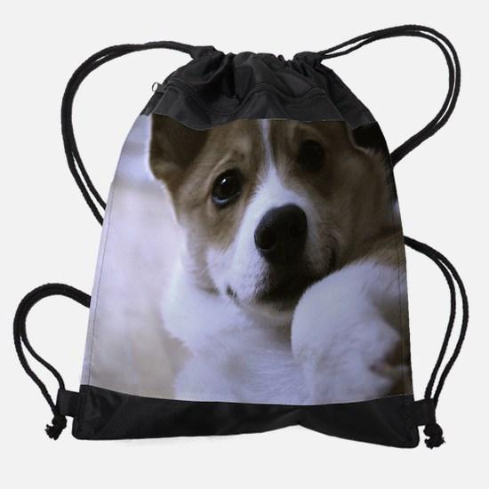 DSC_6308.png Drawstring Bag