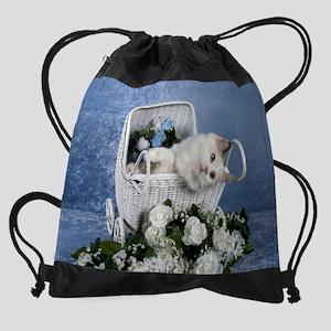 Sassy Stroller Drawstring Bag