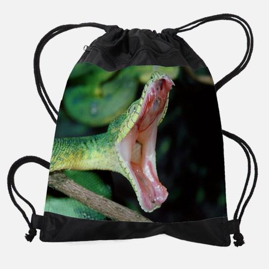 wild snake Drawstring Bag