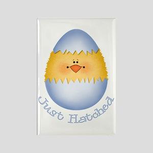 Just Hatched Boy Egg Rectangle Magnet