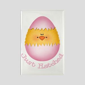 Just Hatched Girl Egg Rectangle Magnet