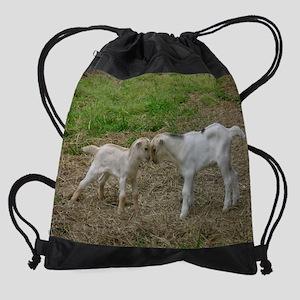 Baby Goats 2012 November Drawstring Bag