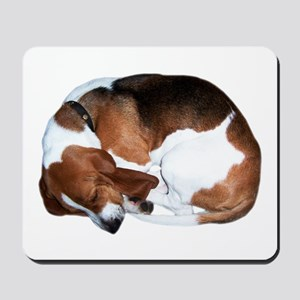 Mousepad: Sleeping Basset Hound