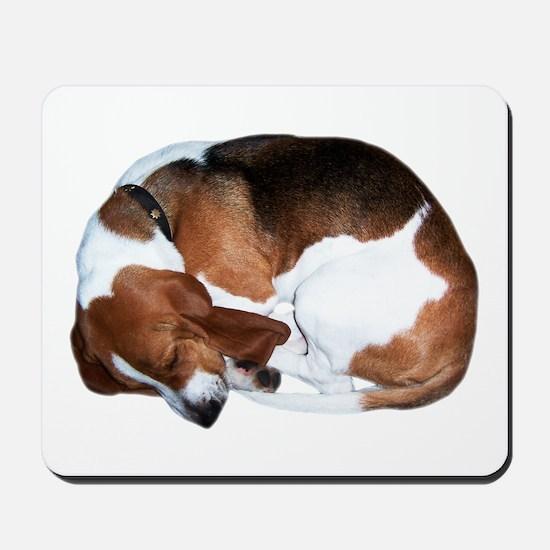 Mousepad: Sleeping Basset Hound