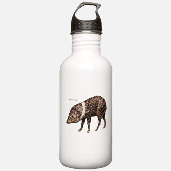 Collared Peccary Animal Water Bottle