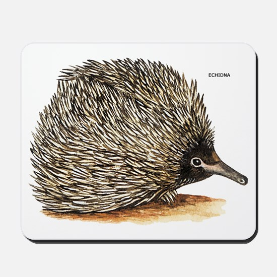 Echidna Spiny Animal Mousepad