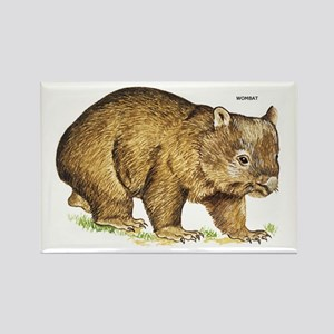 Wombat Animal Rectangle Magnet