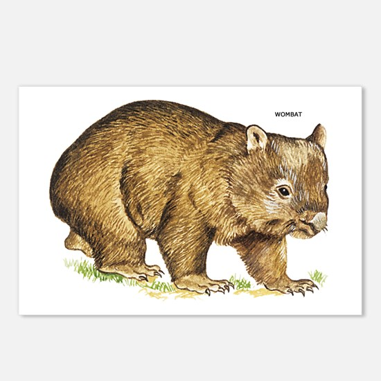 Wombat Animal Postcards (Package of 8)