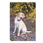 Autumn Yellow Lab Postcards (Package of 8)