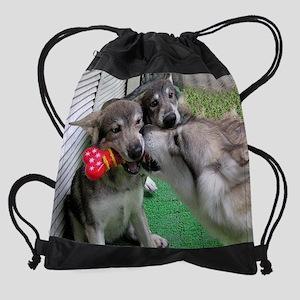 a 62 EN Drawstring Bag