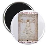 Vitruvian Man Magnet