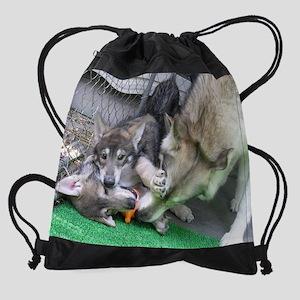 a 60 EN Drawstring Bag