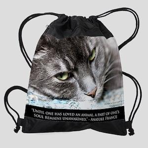 cat_soul_blanket Drawstring Bag