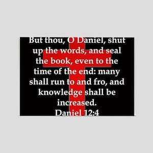 Daniel 12-4 Magnets