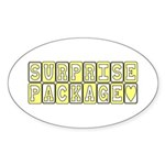 Surprise Package Maternity Oval Sticker