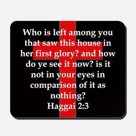 Haggai 2-3 Mousepad