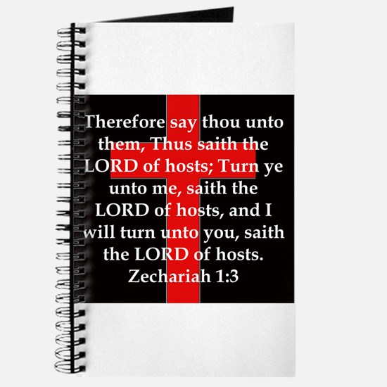 Zechariah 1-3 Journal