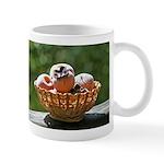 Persimmon Basket Mug
