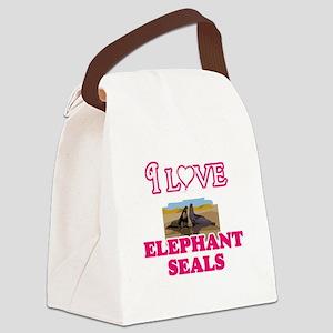 I Love Elephant Seals Canvas Lunch Bag