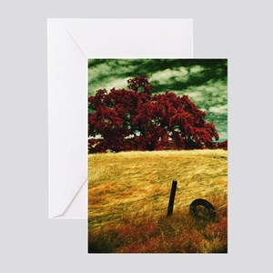 LIVE OAK Greeting Cards (Pk of 10)