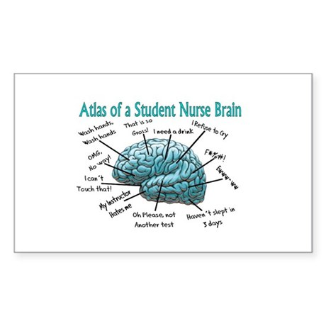 Nursing Student IV 2011 Sticker