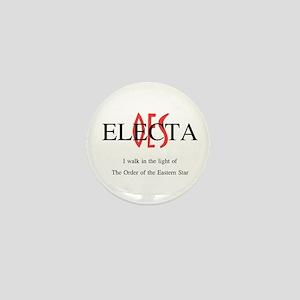 OES Electa '06-'07 Mini Button