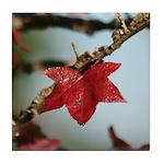 Gum Tree Leaf Tile Coaster