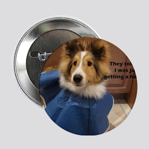 "NEUTERING 2.25"" Button"