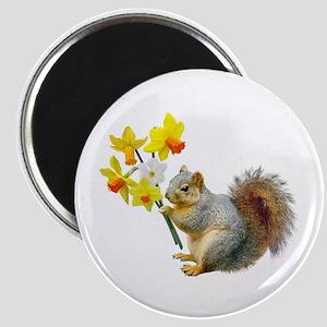 Squirrel Daffodils Magnet