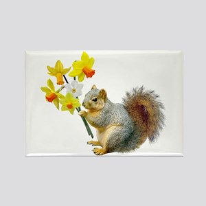 Squirrel Daffodils Rectangle Magnet