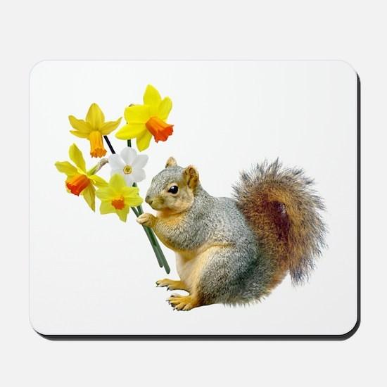 Squirrel Daffodils Mousepad
