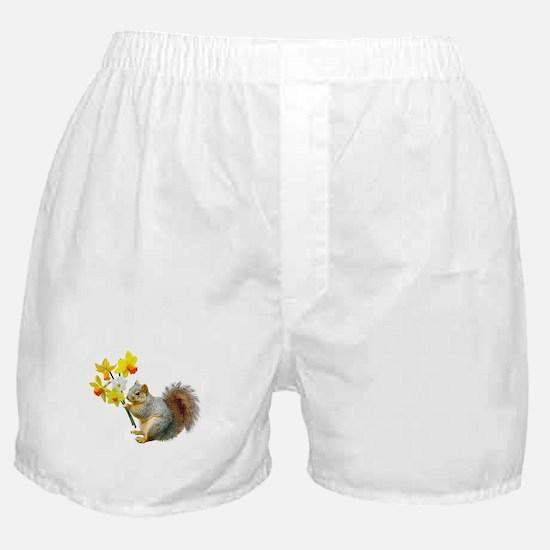 Squirrel Daffodils Boxer Shorts