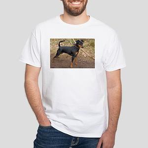 miniature pinscher black and tan full T-Shirt