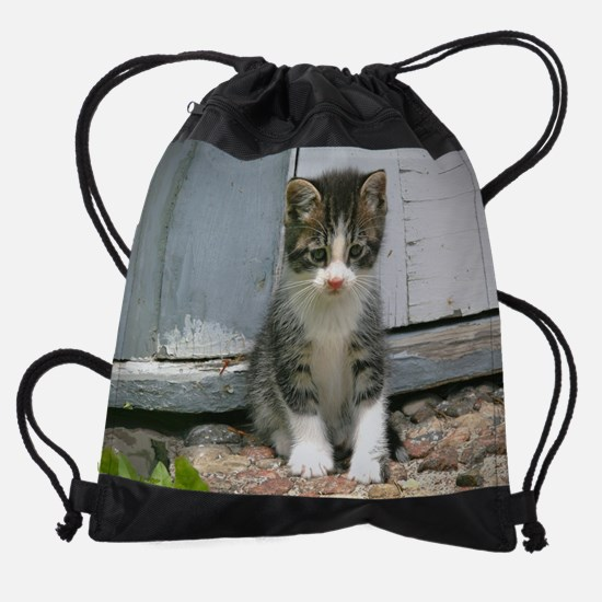 Gershwin the sad lonesome kitty cat Drawstring Bag