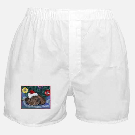 Solomon Waits Boxer Shorts
